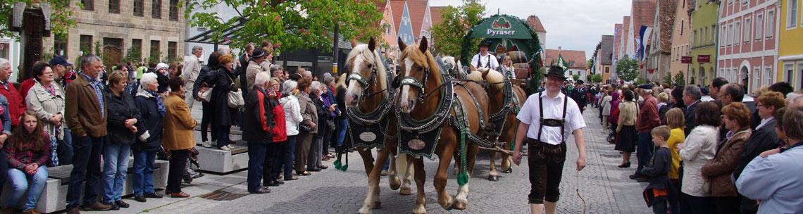 Pferdegespann bei Volksfestauszug